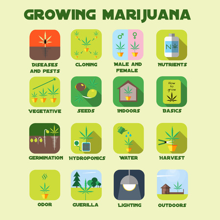 Marijuana growing icon set. Medical cannabis plants germination, odor, vegetative, hydroponics, cloning, seeds, nutrients, indoors, outdoors, lighting, guerilla.
