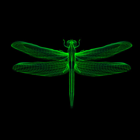 housefly: Green dragonfly. 3d hologram x-ray style vector illustration for prints, bag, tatto or t-shirt. Black background. Eps 10.