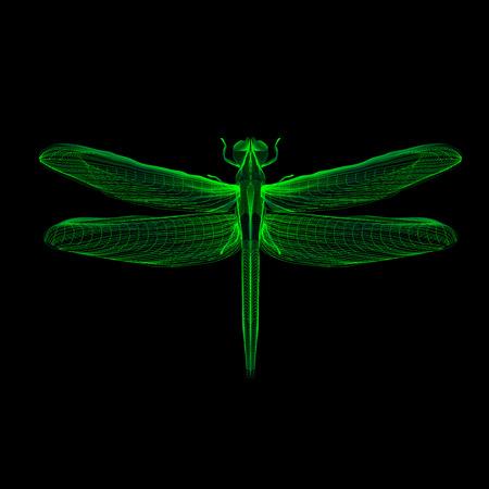 Groene libel. 3D hologram x-ray stijl vector illustratie voor prints, tas, tatto of t-shirt. Zwarte achtergrond. Eps 10.