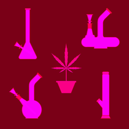 cannabis sativa: Marijuana equipment. Set of different bongs with cannabis plant in pot. Vector illustration on cranberry background.