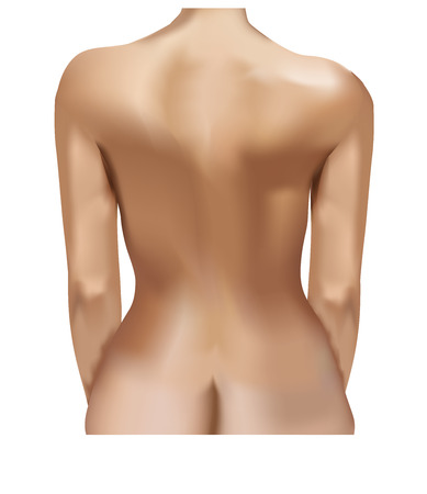 Back of a young naked woman isolated on white background.