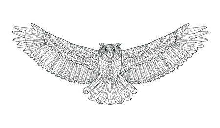 Eagle owl. Coloring page. Animal collection. Hand drawn doodle. Ethnic patterned vector illustration. Zentangle, african, indian, totem, tribal design. Sketch for tattoo, posters, prints or t-shirt.