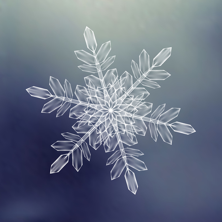 Decorative Snowflakes. Background pattern for winter and christmas theme. Transparent realistic snow flakes with mesh and gradient. Vector illustration EPS10. Clip-art for your design and business