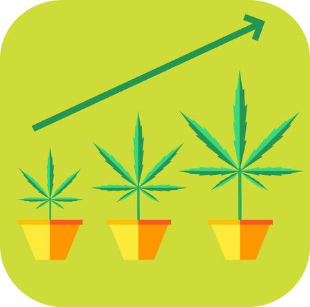 vegetative: Marijuana growing concept. Vegetative icon. Flat style design vector illustration. Illustration