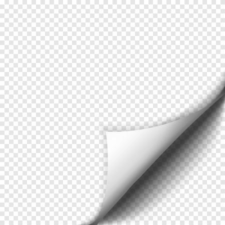 종이의 빈 시트에 그림자와 컬 페이지. 흰 종이 스티커입니다. 광고 및 홍보 메시지에 대 한 요소 투명 배경에 고립입니다. 디자인 및 비즈니스를위한  일러스트
