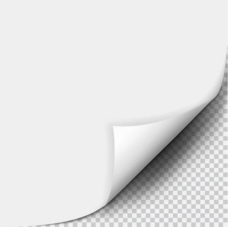 Paginakrul met schaduw op blanco vel papier. White paper sticker. Element voor reclame en promotionele boodschap op een transparante achtergrond. Vector illustratie voor uw ontwerp en bedrijf Stock Illustratie
