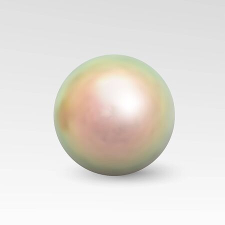perl: Pearl realistic isolated on white background. Spherical beautiful 3D orb with transparent glares and highlights for decoration. Jewelry gemstones. Vector Illustration for your design and business.