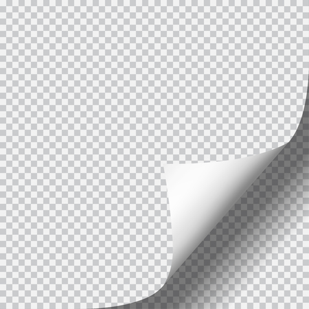Page curl with shadow on blank sheet of paper. White paper sticker. Element for advertising and promotional message isolated on transparent background. Ilustrace