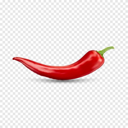 chilli: Red hot natural chili pepper pod realistic image with shadow for culinary products and recipes vector illustration Stock Photo