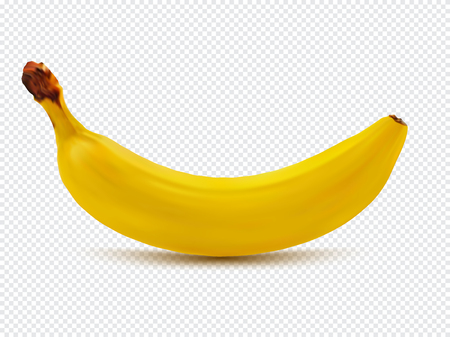 Banana realistic image with transparent shadow vector illustration isolated on plaid white background 向量圖像