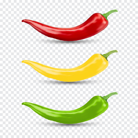hot natural chili pepper set. Pod realistic image with shadow vector illustration. Design for grocery, culinary products, seasoning and spice package, recipe web site decoration, cooking book.