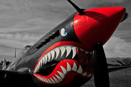 World war 2: War bird P40 Kittyhawk Editorial