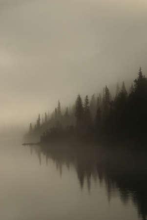Mistig Alaskain Coast Stockfoto