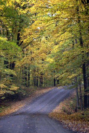 Country Road Stockfoto