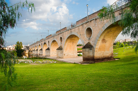 badajoz: Palms bridge in Badajoz, Extremadura, Spain