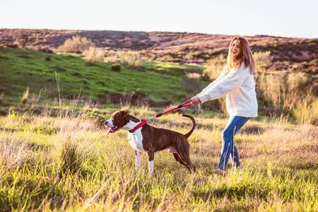 Naughty dog pulling on a leash, happy woman not controlling the dog Imagens