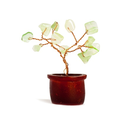 A small decorative tree feng shui on a white background. photo