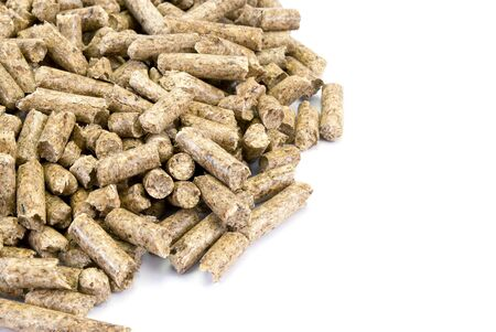 pellets: A neat pile of wood pellets, isolated on white. Fragment.