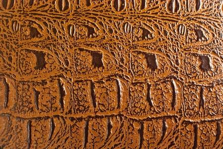 Rectangular piece of brown textured crocodile leather. Stock Photo - 11120599