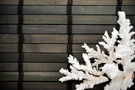 Marine themed background of few coral branches on a wooden mat. photo