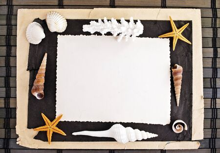Marine theme frame of paper sheets and seashells on a wooden mat. photo