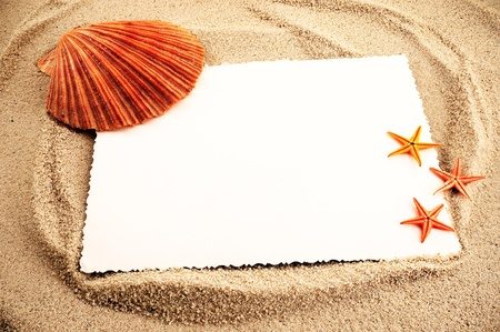 Marine themed background of paper sheet and few seashells on a sand. photo