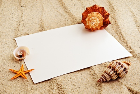 space to write: Marine themed background of paper sheet and few seashells on a sand.