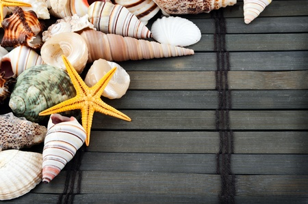 Lots of different seashells on a wooden mat.