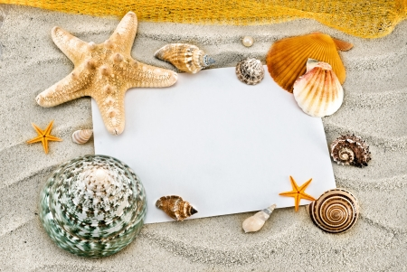 White card and few seashells on a sand. photo
