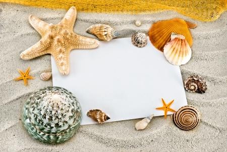 White card and few seashells on a sand.
