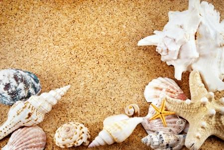 Few seashells on a cork mat. photo