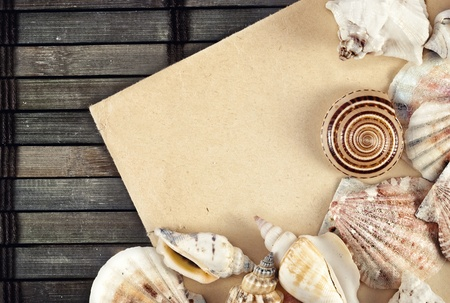 Few seashells on a wooden mat. Stock Photo - 14077705