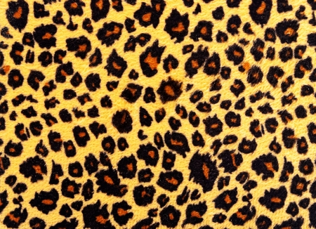 Closeup of leopard skin texture fur. photo