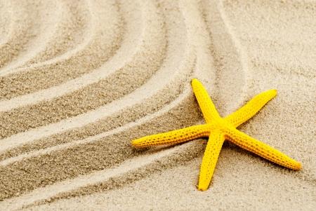 seastar: Beautiful yellow seastar on a wavy sand. Stock Photo
