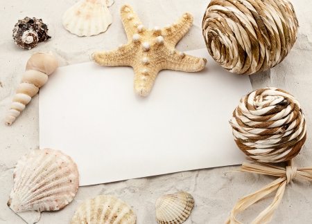 Composition of seashells, few design elements and white empty card  photo