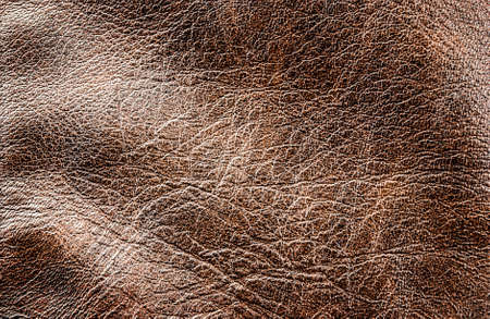 Closeup of leather texture for art design. Stock Photo - 17639746