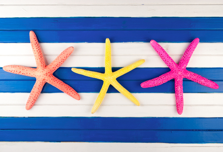 seastar: Three colorful sea stars on a wooden background.