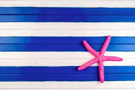 seastar: Pink sea star on a colored wooden background.