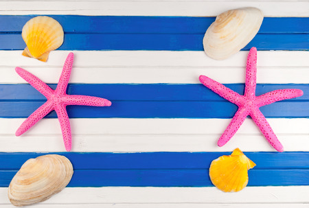 seastar: Few marine items on a wooden colored background.