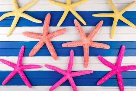 seastar: Few colorful sea stars on a wooden background.