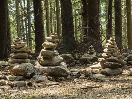 goodluck: Cairn in the forest