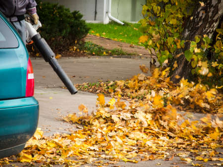 Leaf blower in use Stock Photo