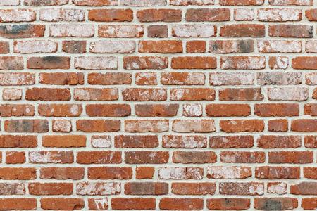 Klink first wall
