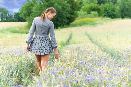 Unity with nature, walk on a cornflower field.