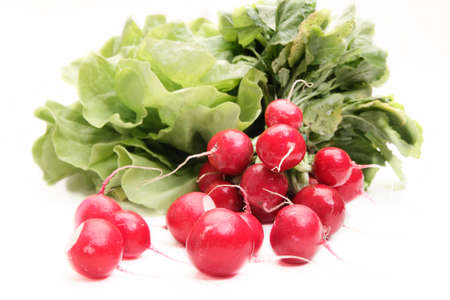 crudite: Fresh radish on white background Stock Photo