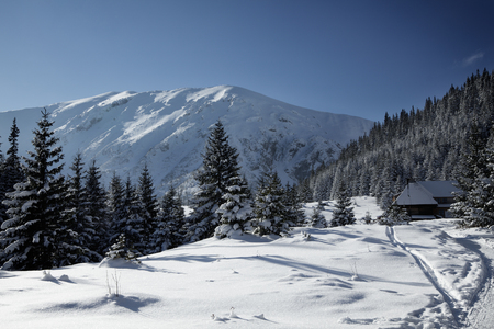 Snowy view in Tatra Mountains, winter landscapes series