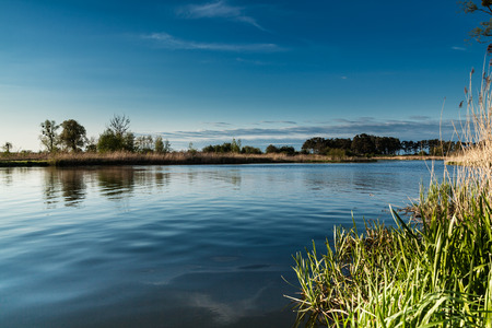 water view: Landscape on the river Nogat spring Poland