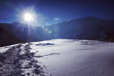 Snowy view in Tatra Mountains, winter landscapes series. Toned image 스톡 콘텐츠