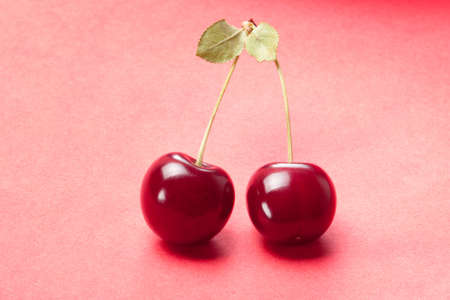 sour cherry: Sour cherry on red background. Studio shoot. Stock Photo