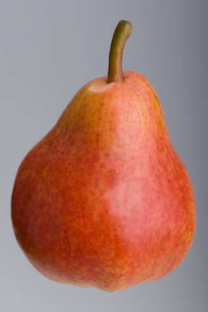 studio shoot: Ripe Red Pear on grey background, Studio shoot. Stock Photo